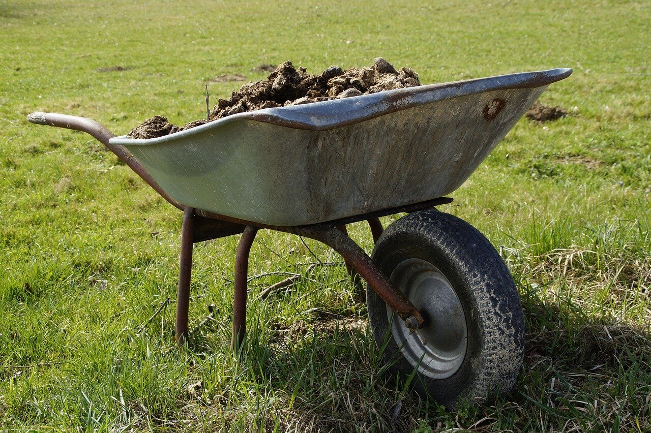 how to compost donkey manure