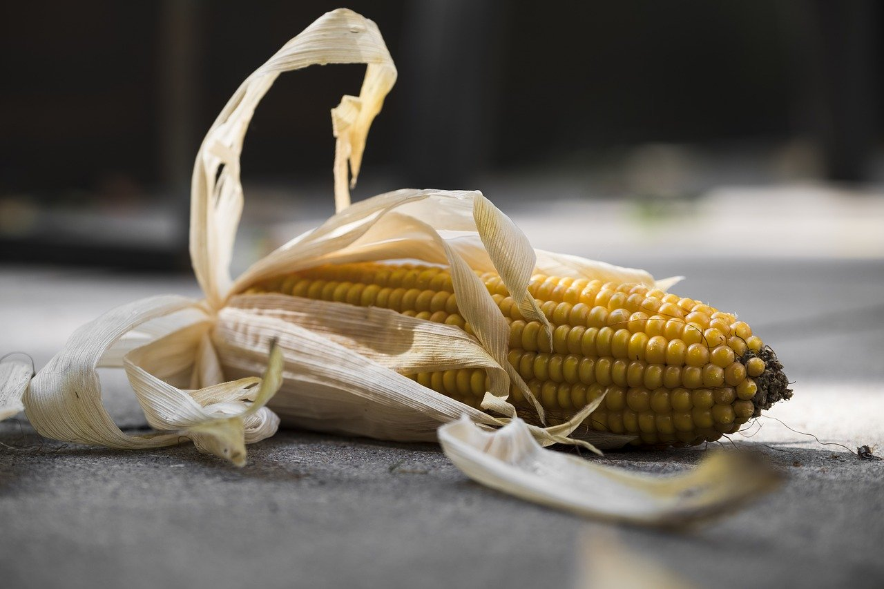 is high fructose corn syrup good or bad