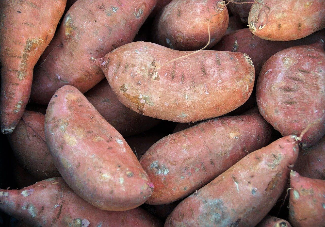 what to do with bad sweet potatoes