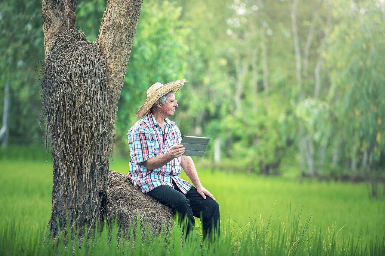 daily life on a farm