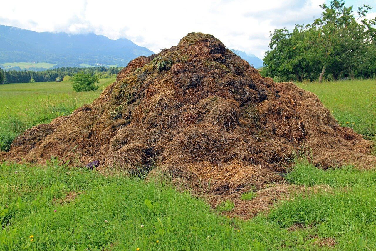 why is composting so important