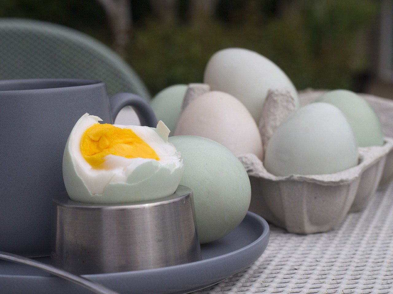 how to use duck eggs