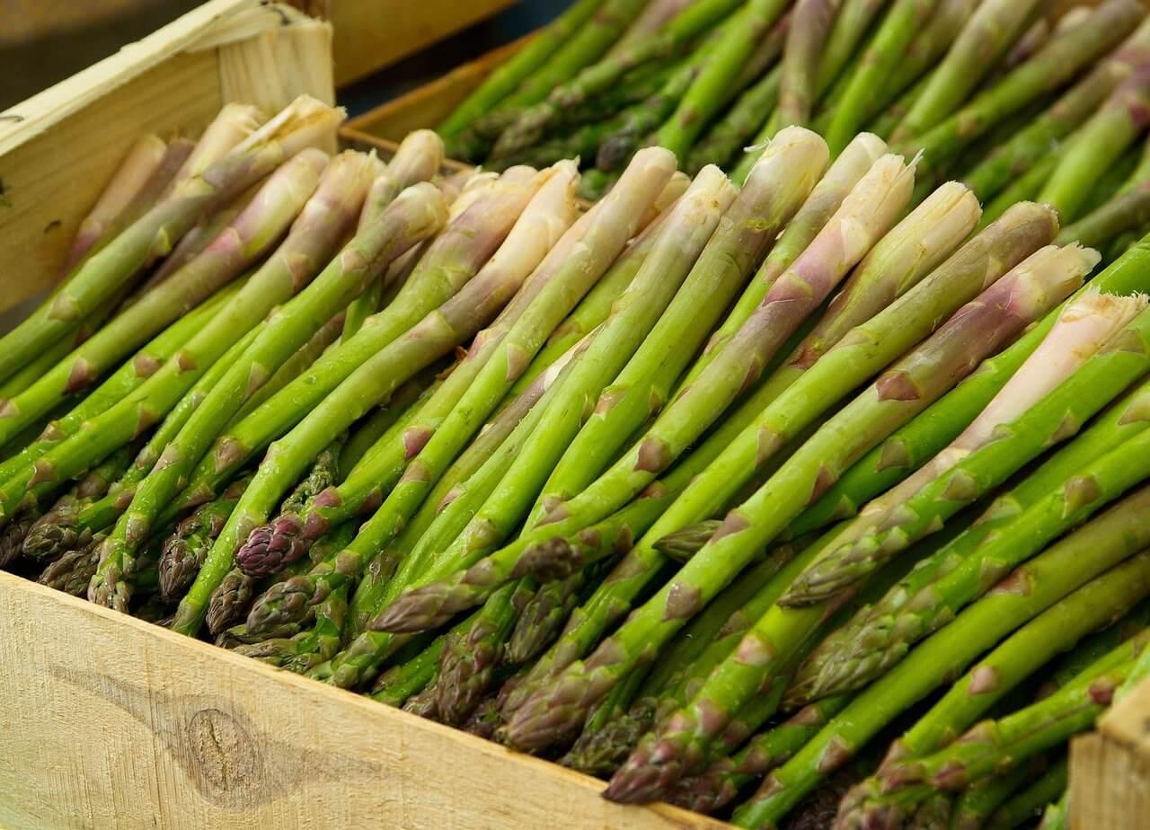 when to cut back asparagus plants