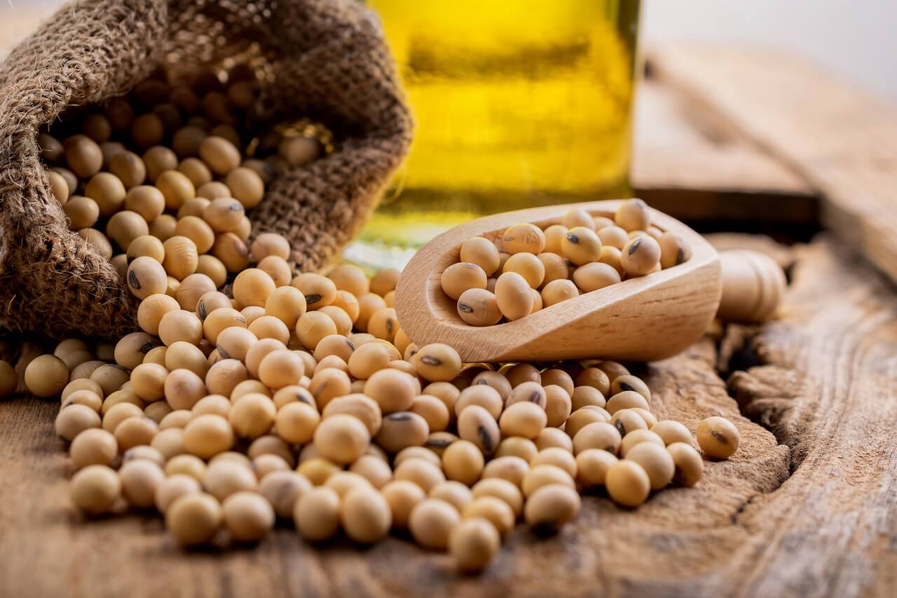 factors affecting soybean storage