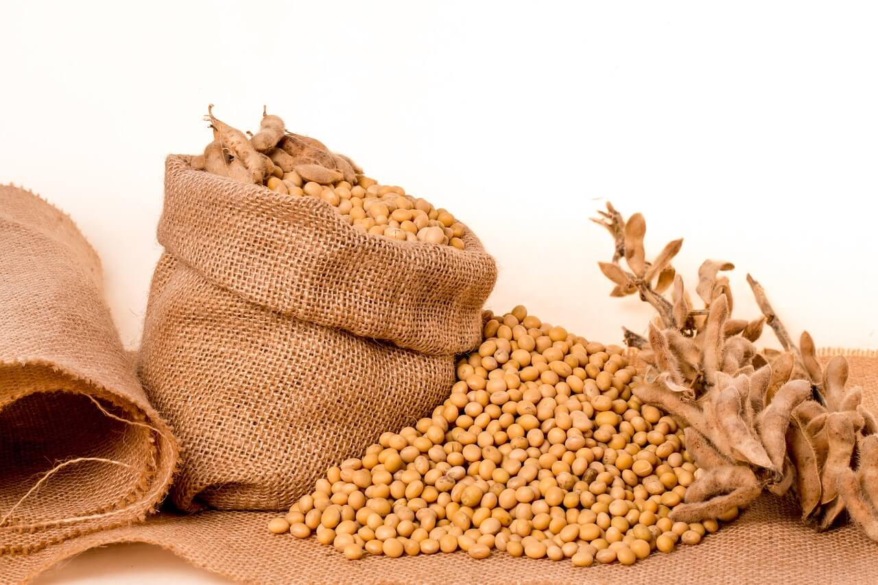 why roast soybeans
