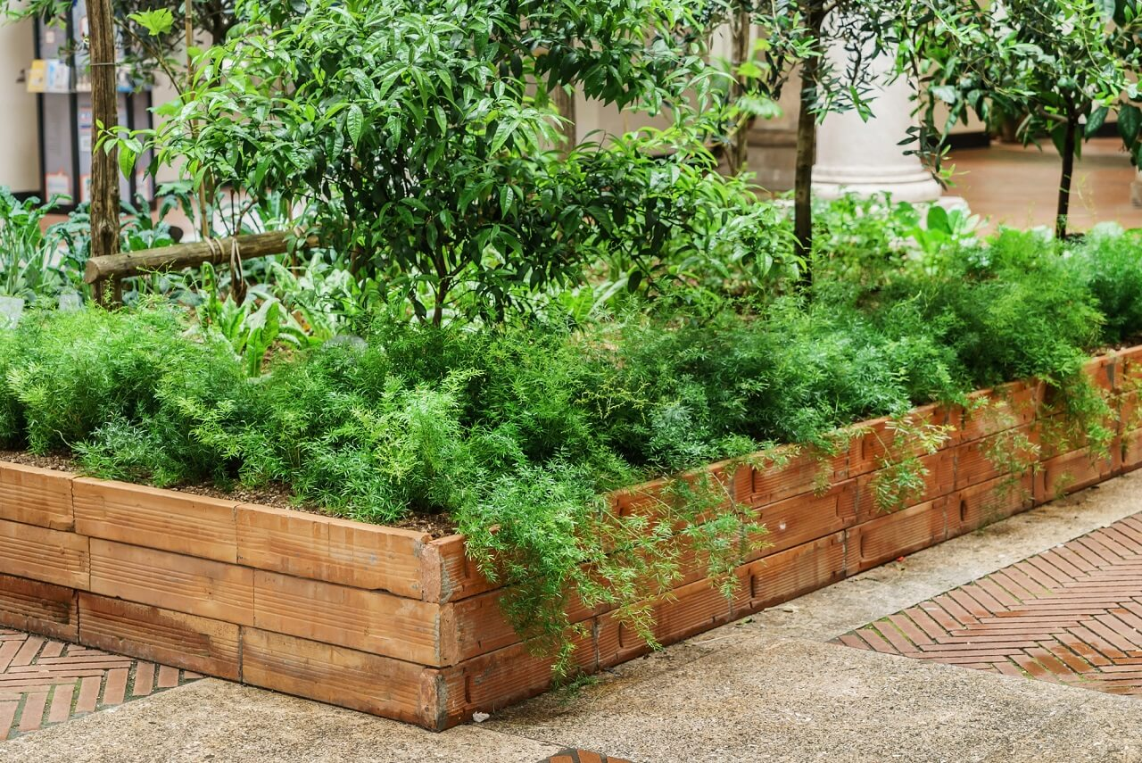 difference between urban farms and community gardens