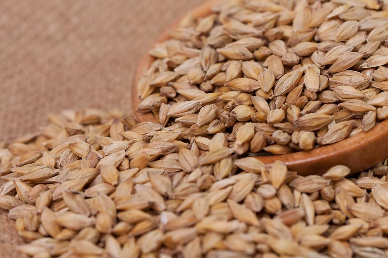 what is barley malt syrup made of