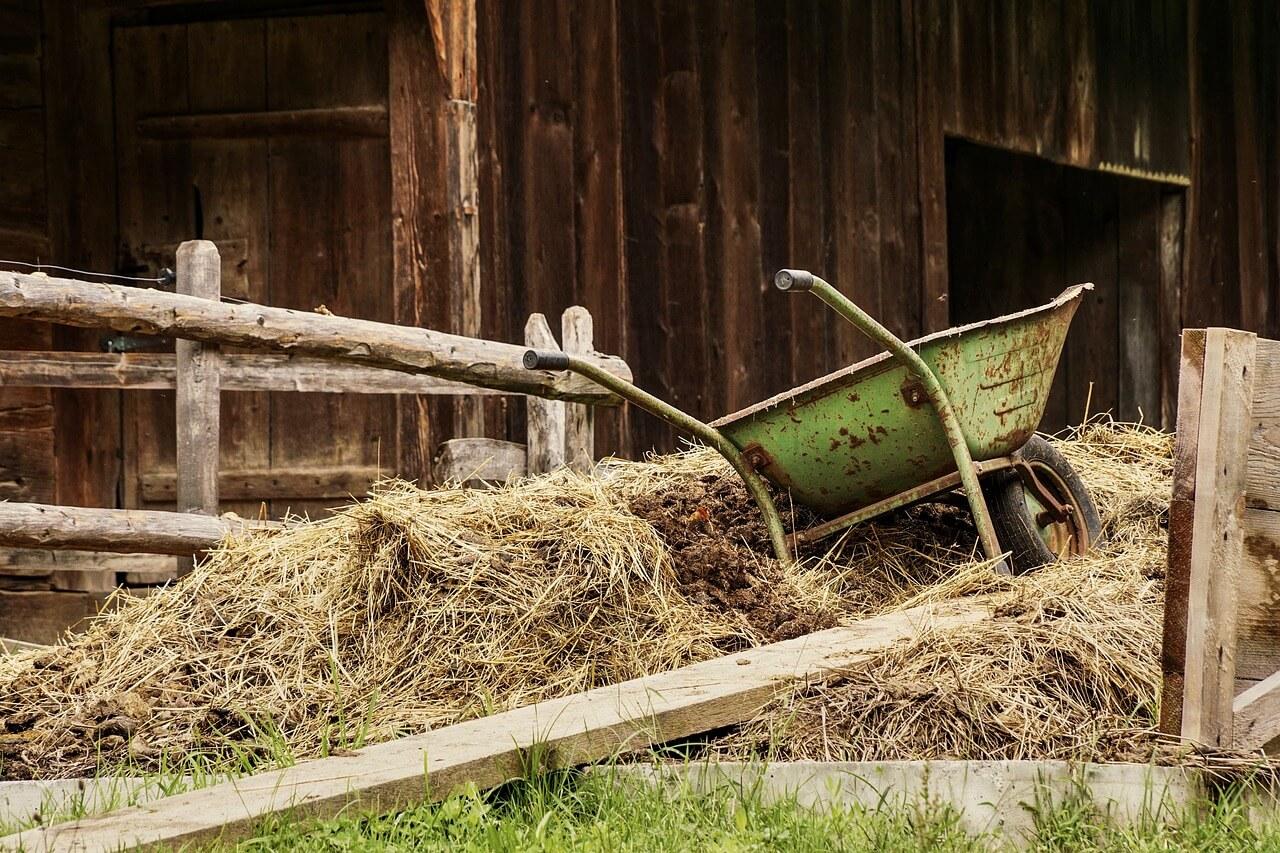 What is a Wheelbarrow