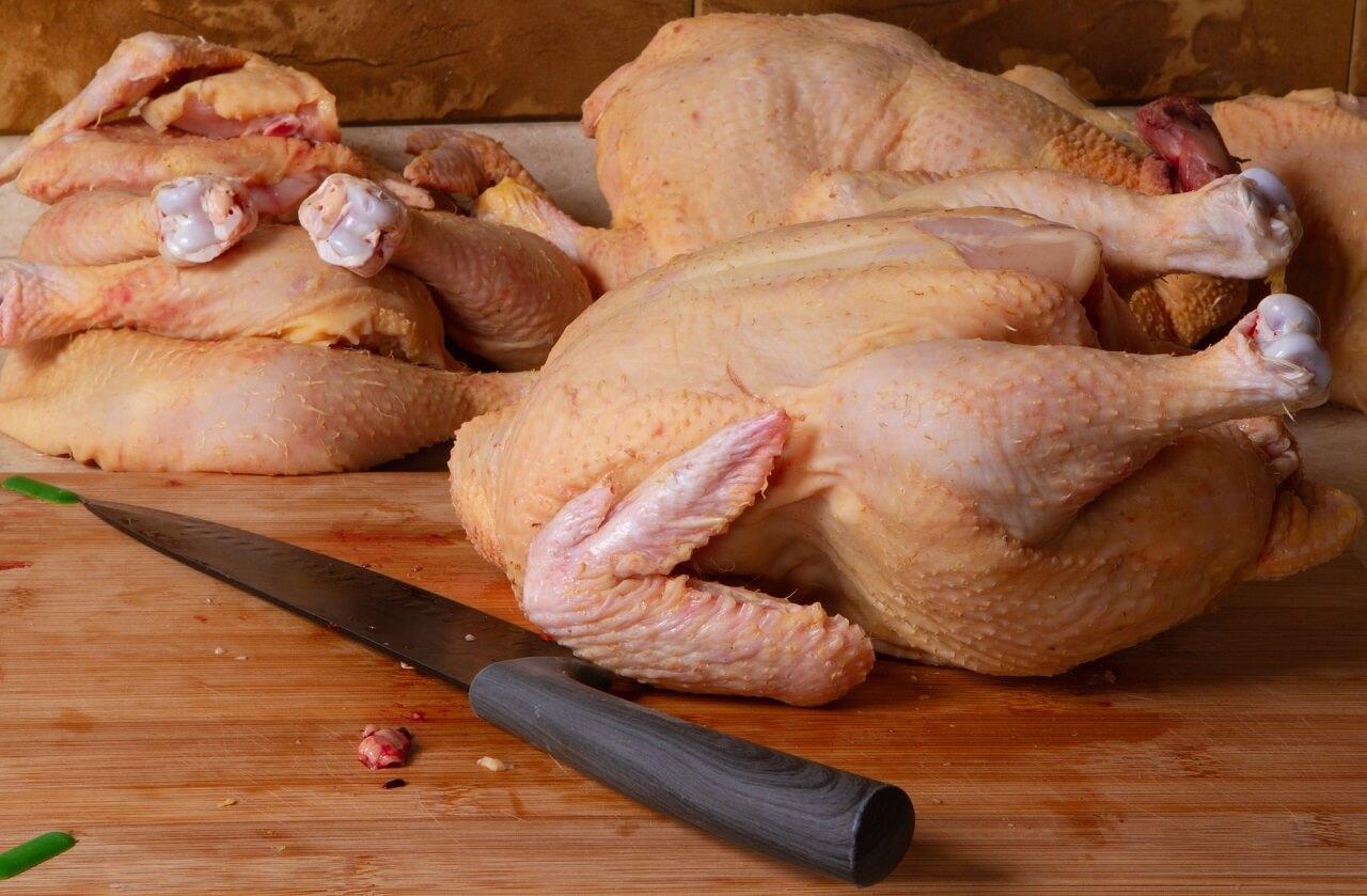 best knife for butchering chickens