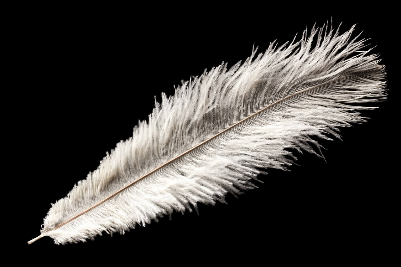what is the best way to dye feathers