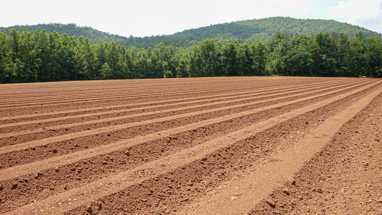 how to amend clay soil in farm